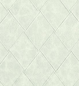 Giấy Dán Tường Danvi 53020-1