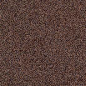 MSC2105