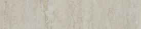 MSS3101